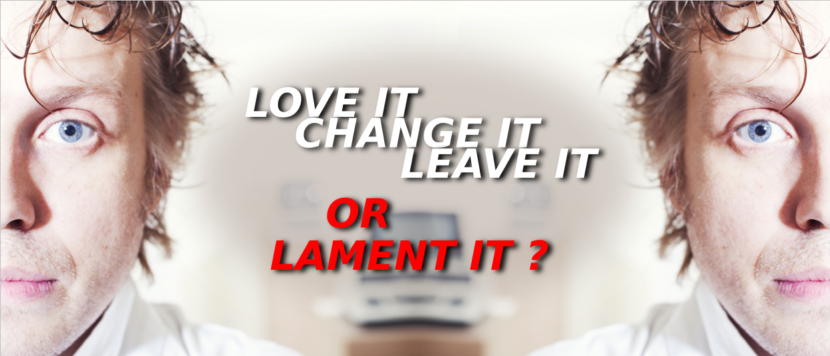 love it - change it - leave it